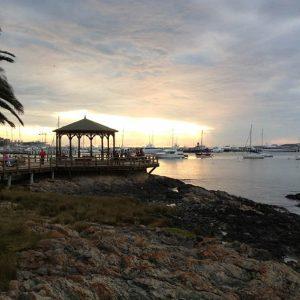 BLOG – Os lobos marinhos do porto de Punta del Este
