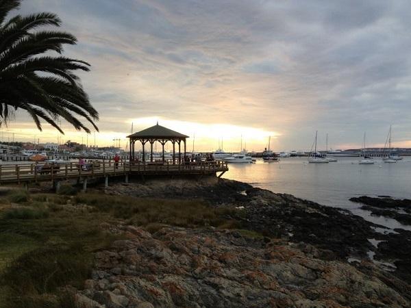 O que fazer em Punta del Este Porto de Punta Lobos Marinhos