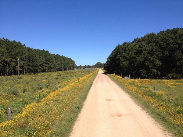 cabo polonio uruguai estrada