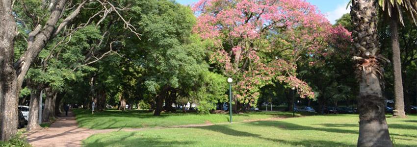 Parque Batlle - Montevidéu | Uruguai